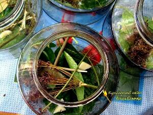 Как приготовить огурцы с кабачками