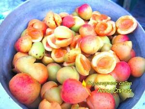 Как приготовить варенье из абрикос