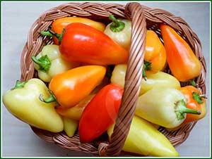 Перец фаршированный овощами с грибами и рисом
