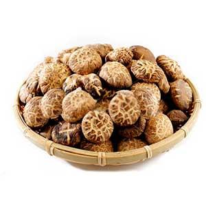 Грибы шиитаке и их лечебные свойства