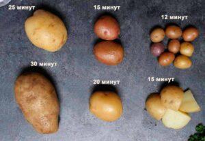 Сколько времени варить картошку в мундирах